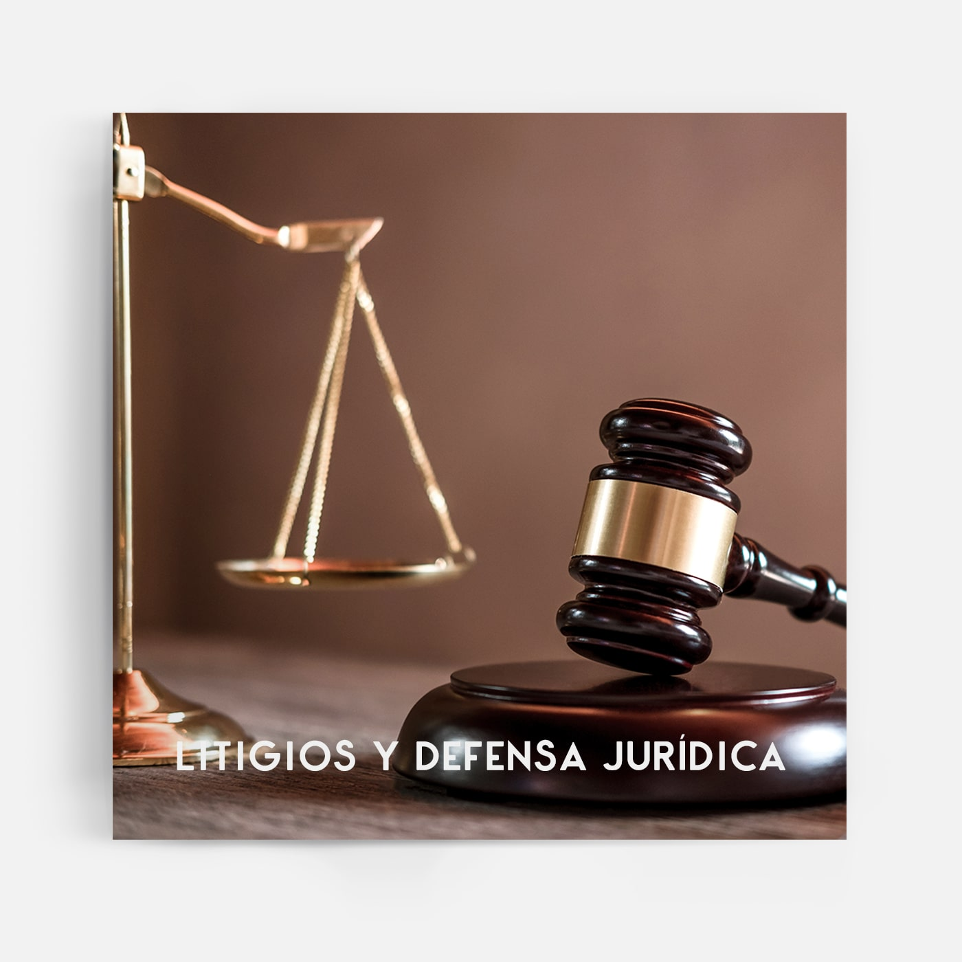 Litigios y defensa jurídica